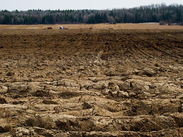 Farm Field - Eau Claire