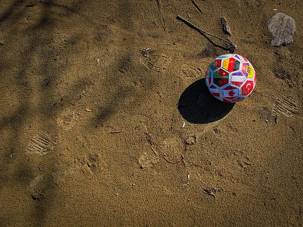 Ball - North Bay