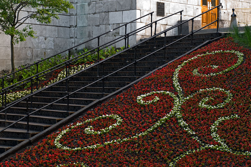 Stairs and Flowers - Quebec City - Quebec