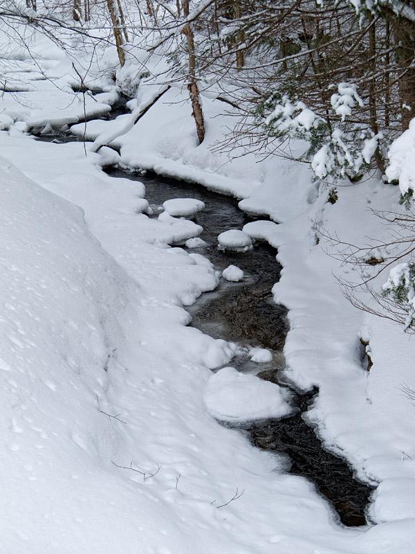 Creek - North Bay