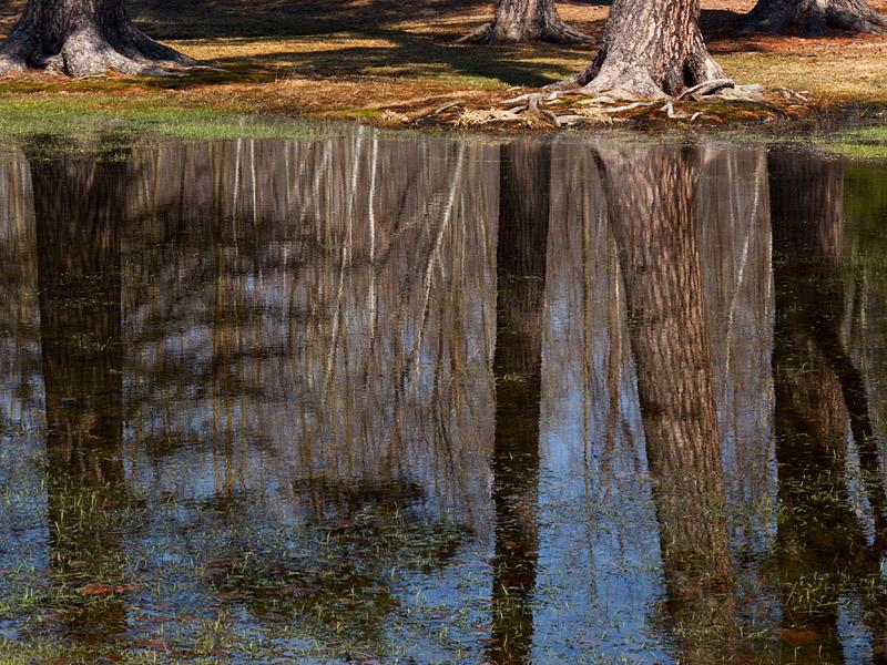 Reflection - North Bay - Ontario