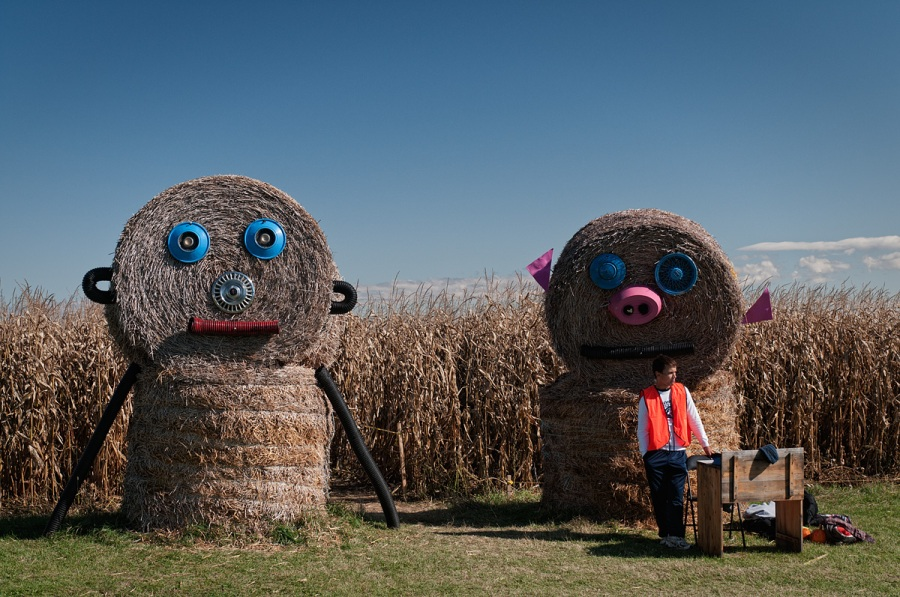 Corn Maze - Sturgeon Falls - Ontario