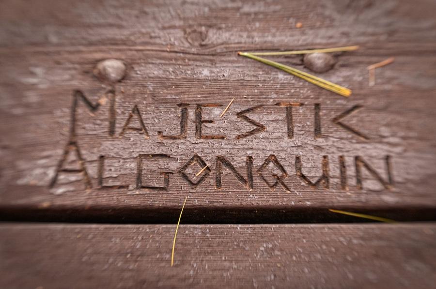 Majestic Algonquin - Algonquin Park - Ontario