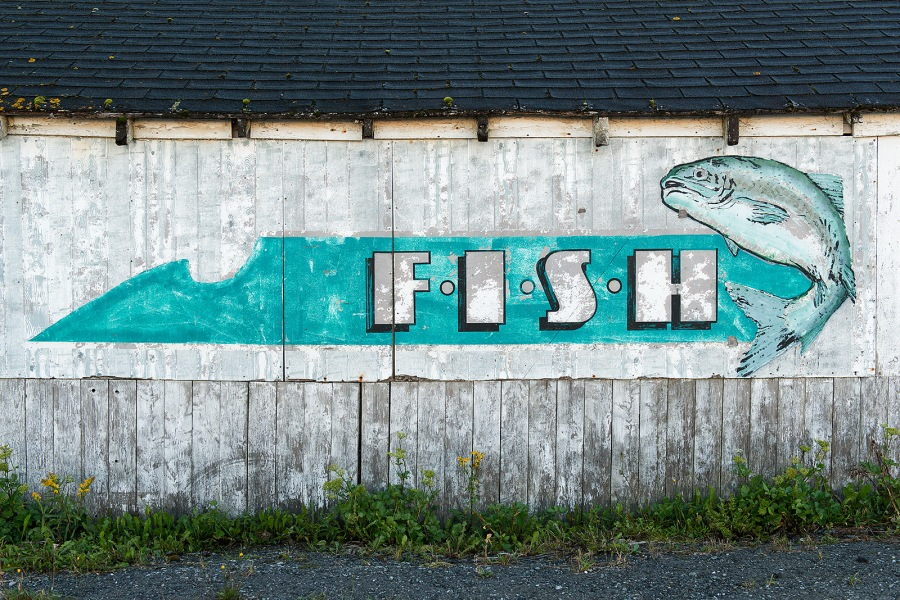 Fish - Nova Scotia